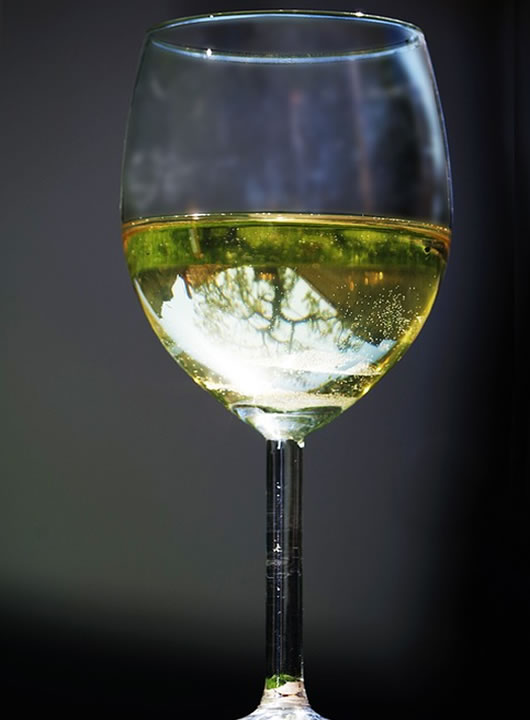 Image of White Wine Glass